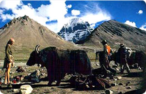 Simikot Kailash Tour- Simikot kailash tour information